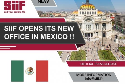 Mexico foundry iron aluminum steel robotic finishing cell